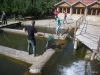 Fischlokal