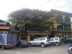 Tree House in Sta. Elena