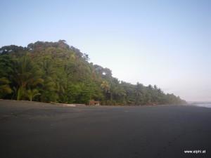 Menschenleerer Strand