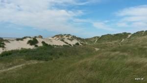 Wanderung zwischen den Dünen